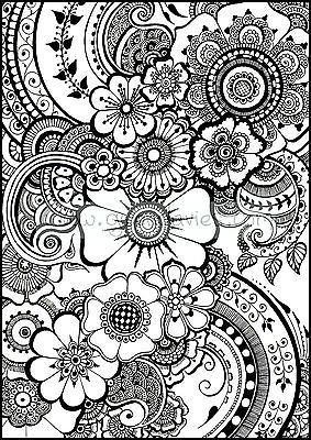 adult colouring in a4 - Google Search | drawing | Paisley color ...