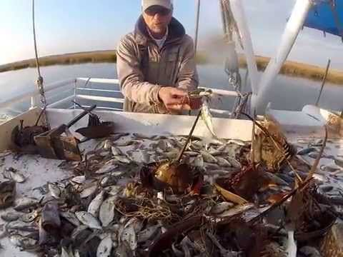 Shrimp Fishing on the 'Betty H' - YouTube