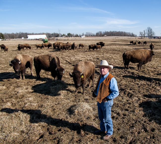 A Monroe County Ranch Where The Buffalo Roam Photo Gallery Photo Gallery Photo Galleries