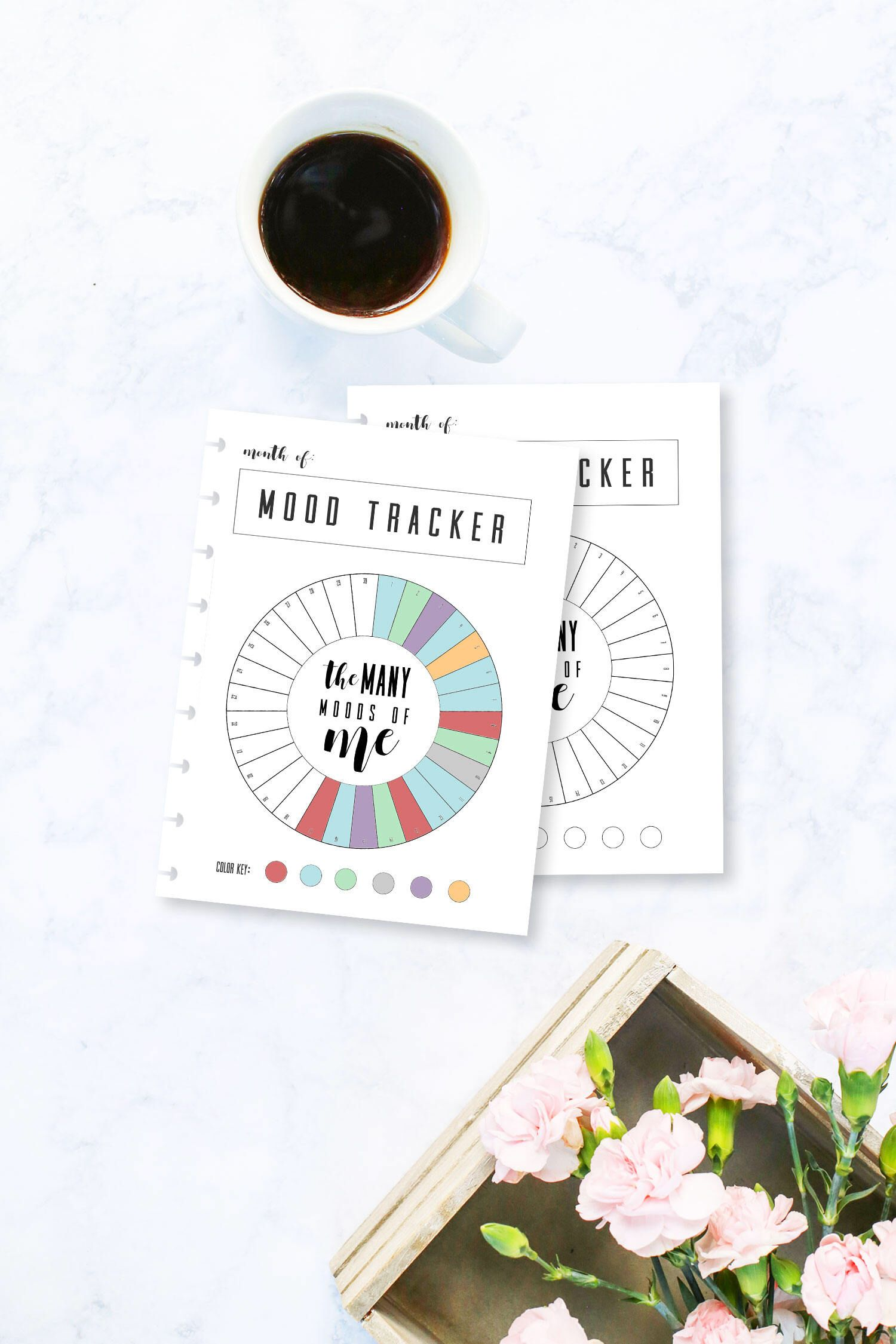 Monthly Mood Tracker Circle Happy Planner Big Mood Chart