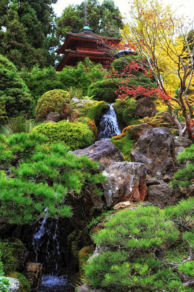 This part of the Japanese garden is spectacular with its natural beauty and tranquility…waterfall, fall trees and rocks make a beautiful place!!