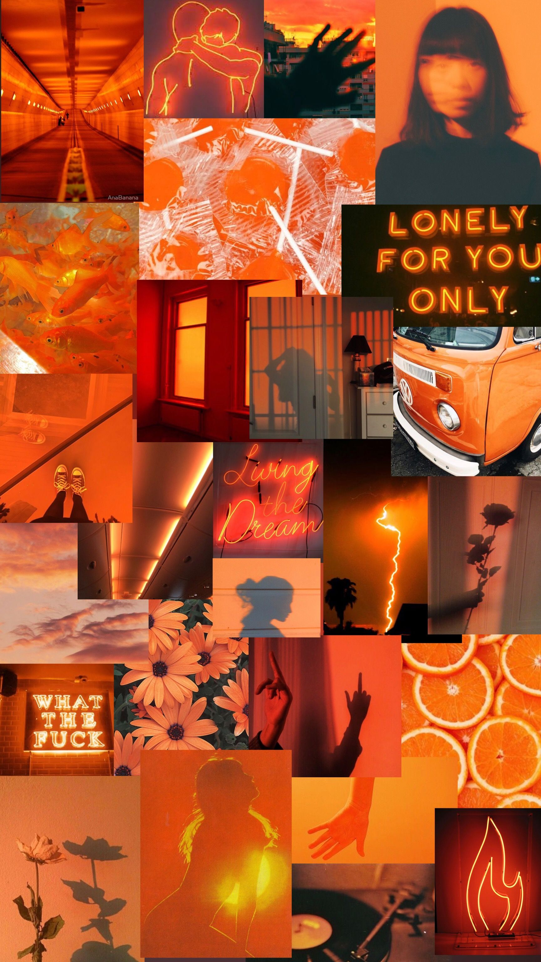 Pin By рыжий кот On Collage Wallpaper Iphone Wallpaper Orange Orange Wallpaper Colourful Wallpaper Iphone