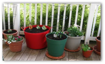 Patio Vegetable Garden Ideas For Growing A Small Space Gardening Simple Container Hanging Or Vertical