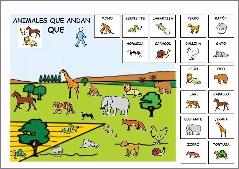 Pin von Marta García Valtuille auf Fauna y flora | Pinterest | Kind