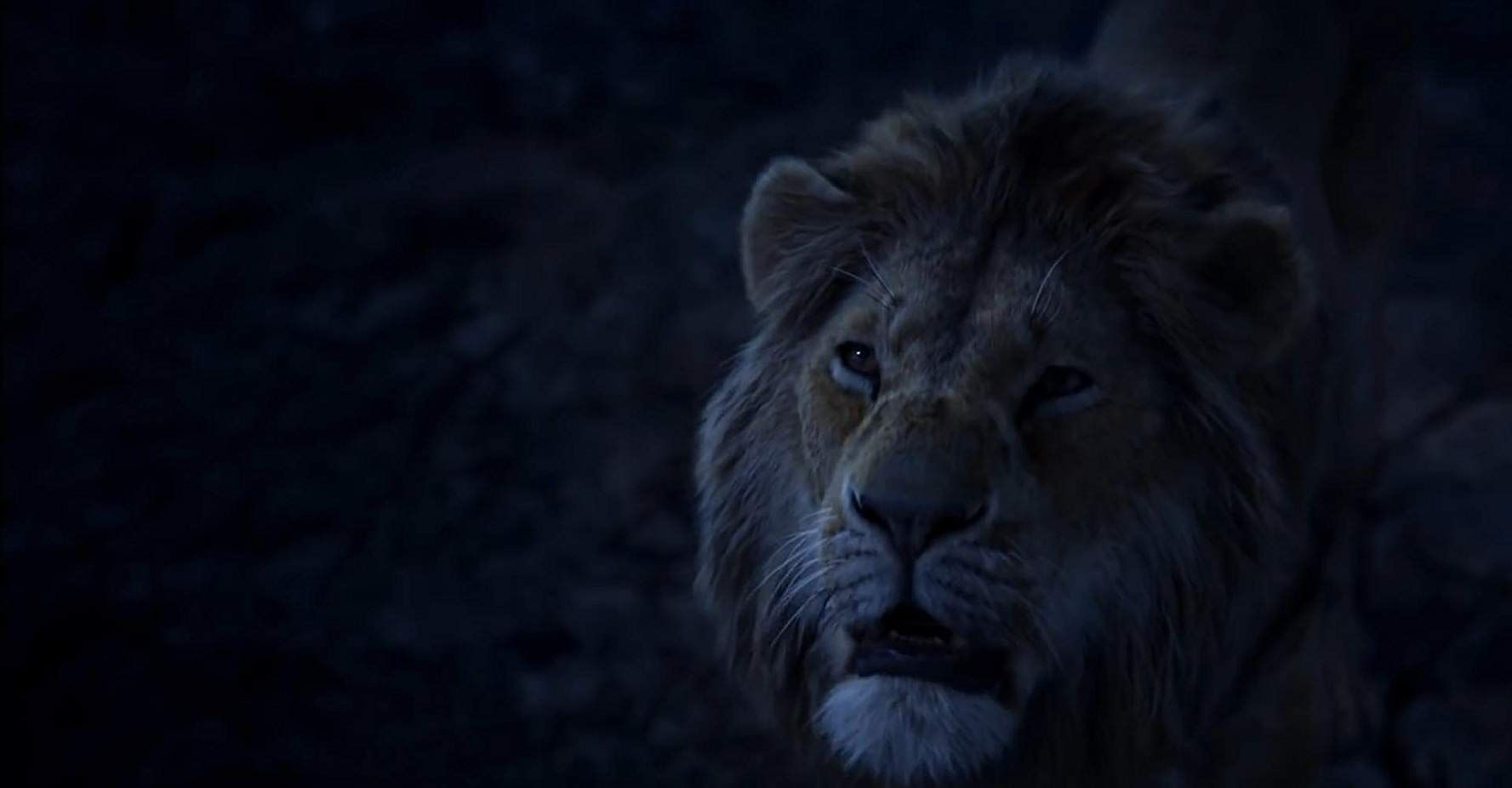 Donald Glover In The Lion King 2019 Lion King Watch The Lion