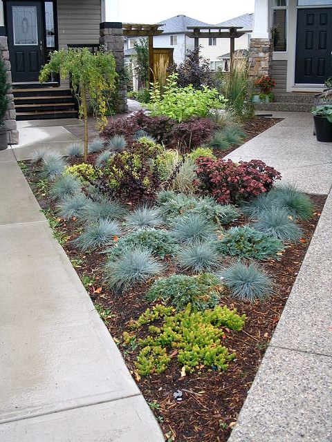 My Front Yard That I Share With My Neighbour Both Lots Are Pie Shaped So The Size Of The Front Yard Landscaping Small Front Yard Landscaping Yard Landscaping