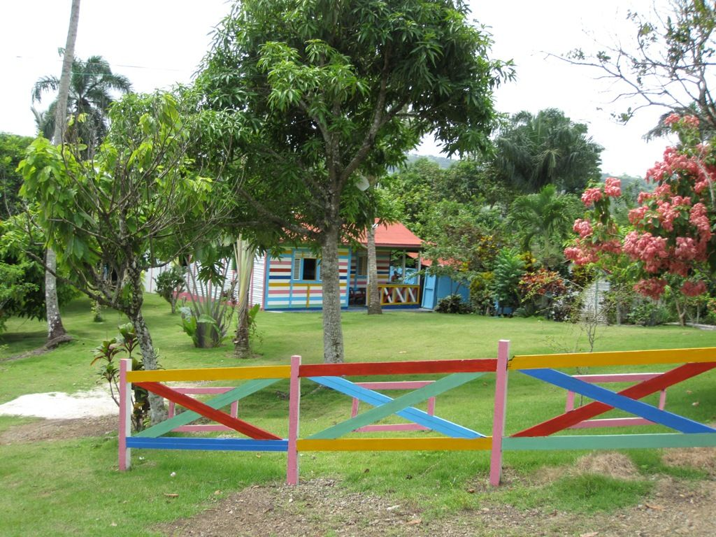 Pin En Dominicana Soy