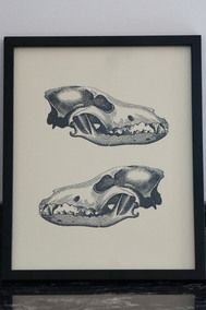 Double Skull Framed Print