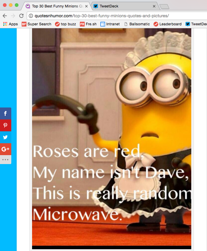 As for browser history, I hope they find all the websites I visit for shit Minions memes.