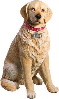 Life Size Blonde Golden Retriever Sandicast Statue From Dogstuff