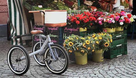 d couvrez trikka le tricycle pour personnes g es velo. Black Bedroom Furniture Sets. Home Design Ideas