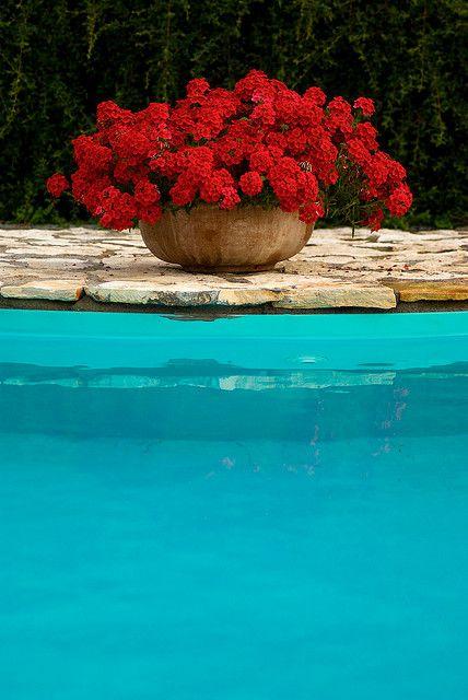 Rosso E Azzurro Plants Around Pool Flower Pots Outdoor