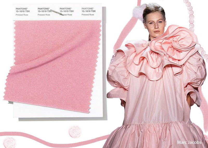 Resultado de imagen de pressed rose  pantone