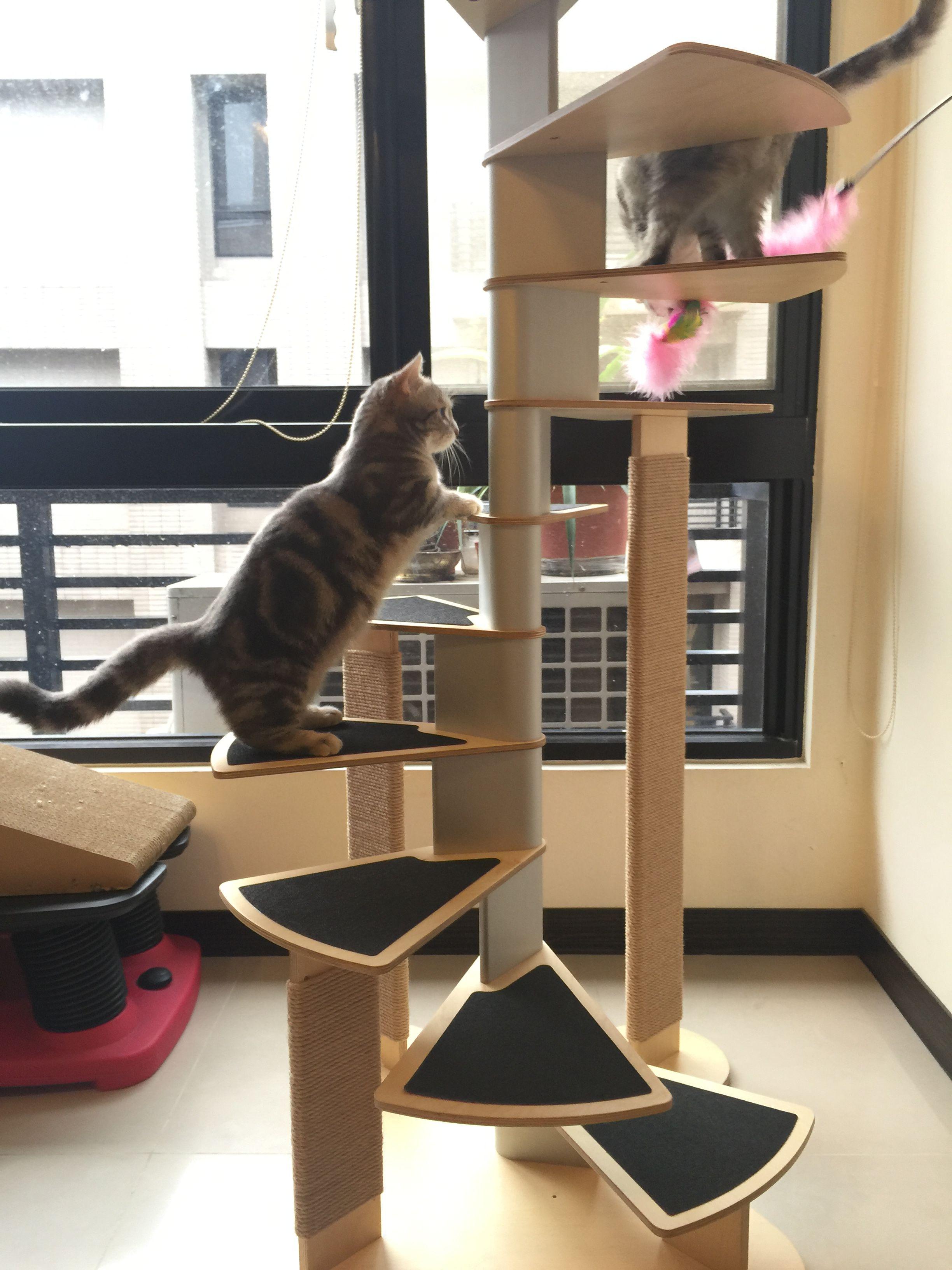 Best Cat Spiral Staircase Cat Furniture มีรูปภาพ 400 x 300