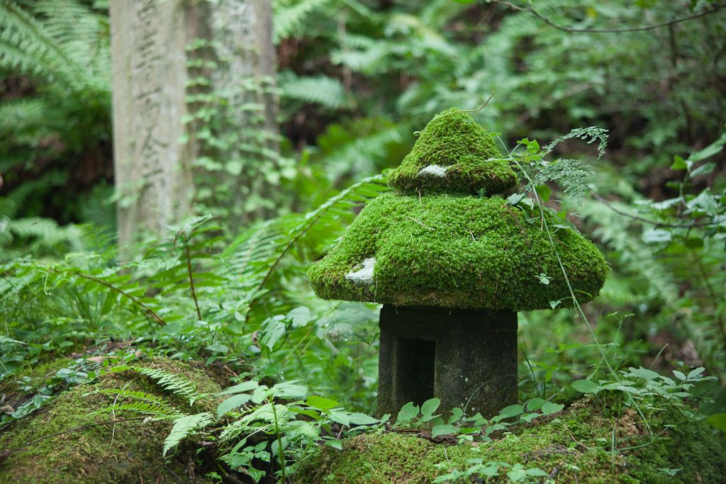 Mossy lantern in forest Lanterns, Fantasy forest, Garden art