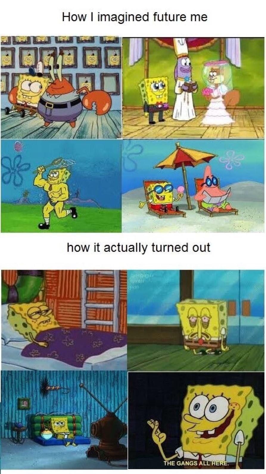 Future Me Funny cartoon memes, Spongebob funny, Funny
