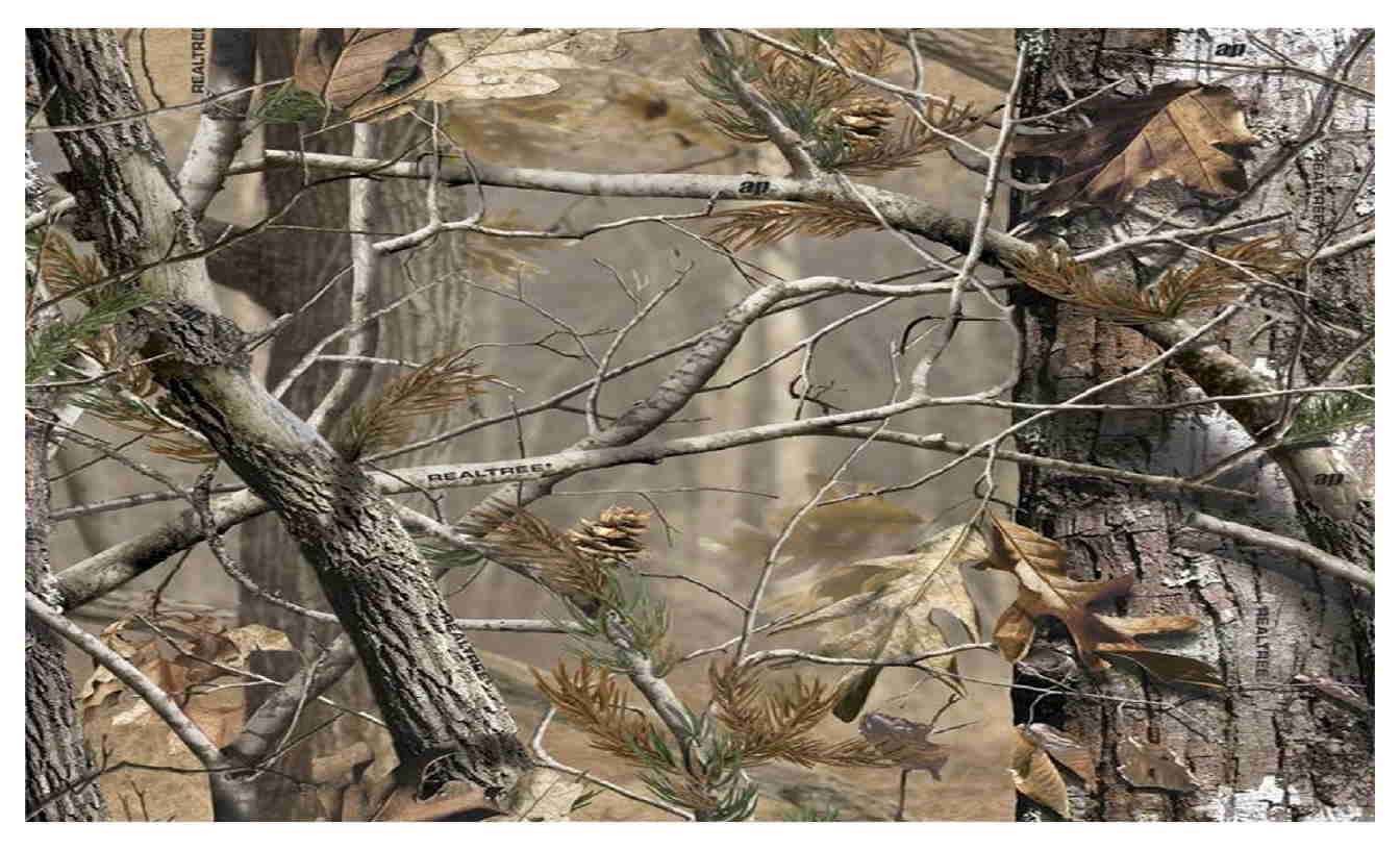Edible cake image 12 sheet 10x16 camo realtree 1200 edible cake buycottarizona