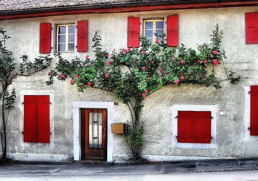 Village of Cheserex, Switzerland