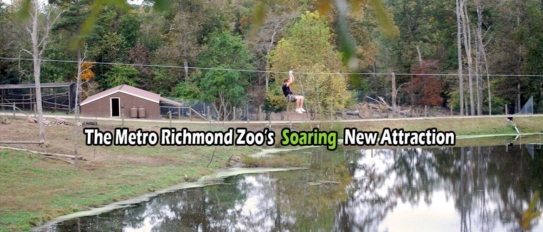 Zip Line And Adventure Park At The Metro Richmond Zoo Adventure Park Ziplining Travel Tree