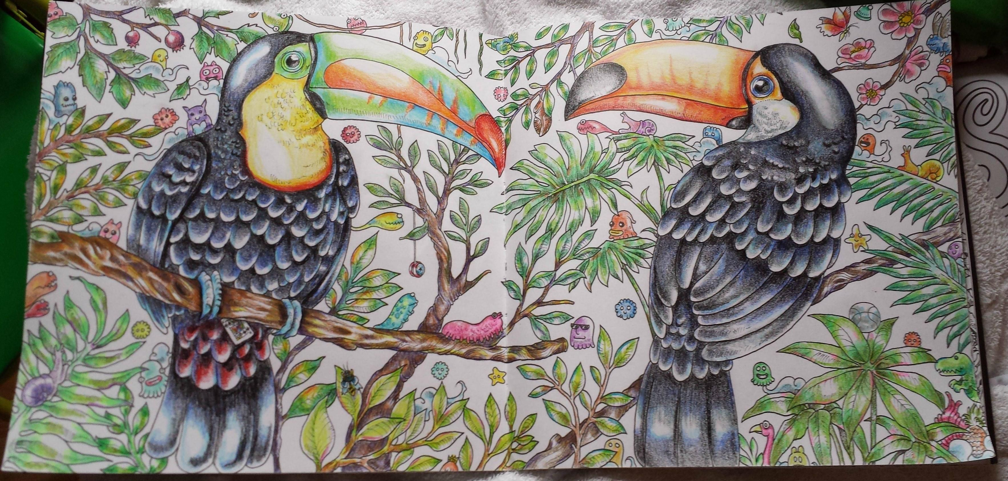Two Toucans From The Adult Coloring Book Animorphia Just