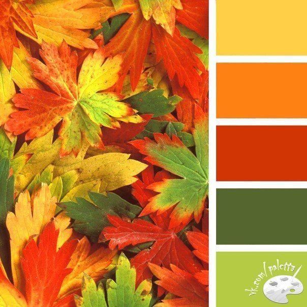 Farben, Farbpalette Und Palette