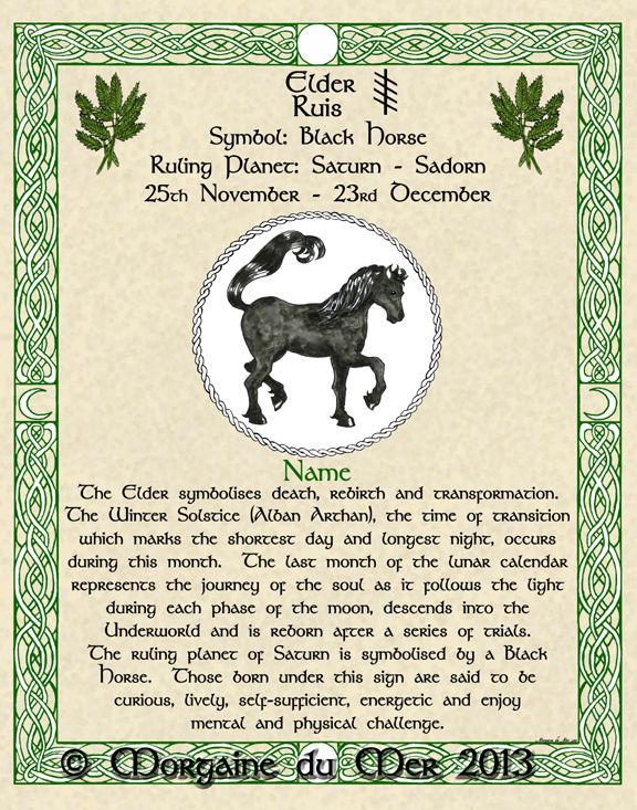 What's Your Sign? Lunar Astrology and Druid Tree Lore