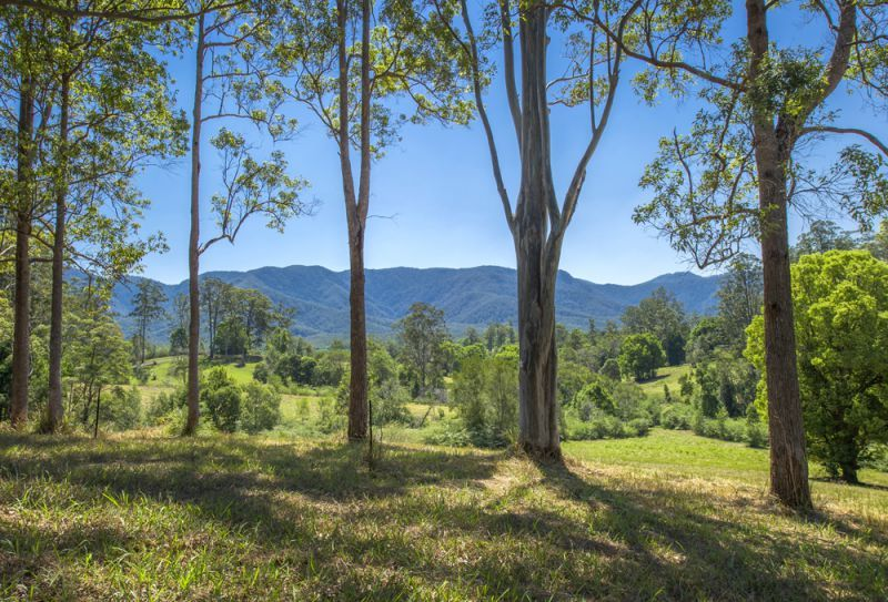 Lot 22, 605 Roses Road Bellingen