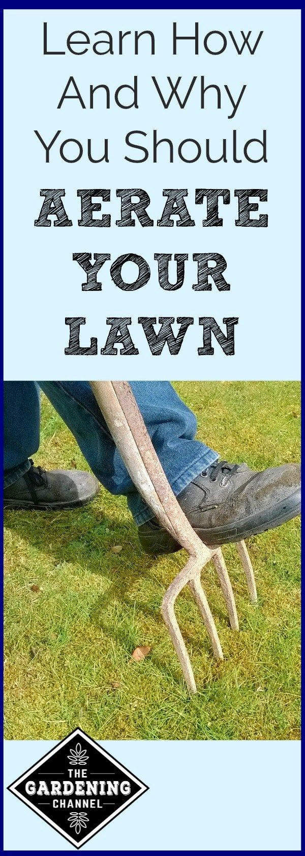 Lawn Aeration - Gardening Channel