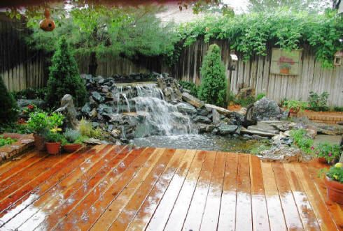 Local Water Features Builders Pond Builders Fish Pond Gardens Koi Fish Pond Fish Ponds