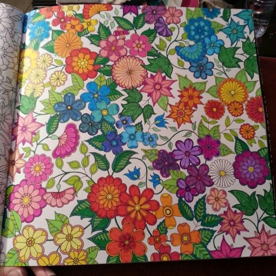 Jardin Secret De Johanna Basford Garden ColouringWatercolor