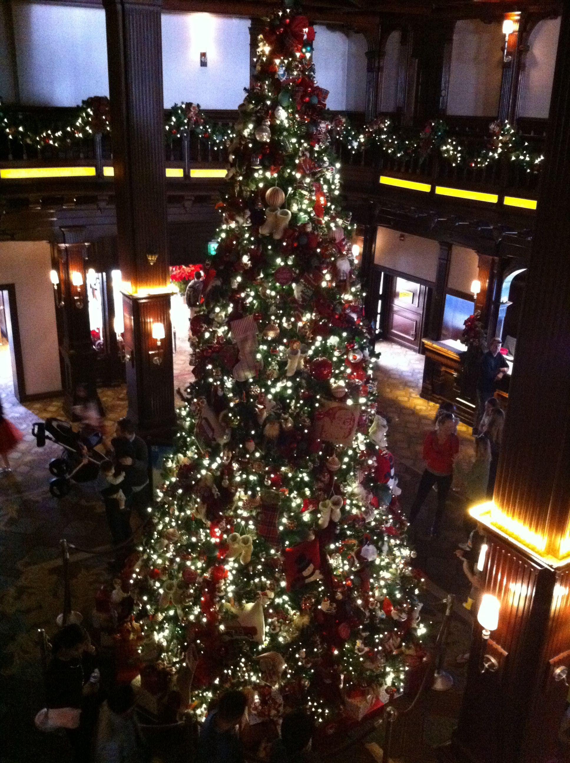 Hotel Del Coronado Christmas Tree 2021 Hotel Del Coronado Christmas Tree Rvbangarang Org