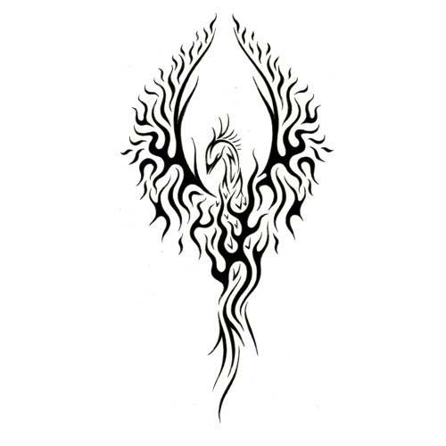 tribal phoenix tattoo tattoos pinterest tatouage. Black Bedroom Furniture Sets. Home Design Ideas
