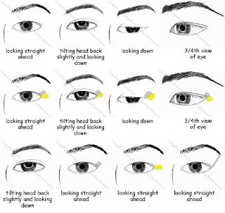 Eye Diagrams For Asian Monolid And Eyes With A Crease Into The Palette Asian Eye Makeup Monolid Eye Makeup