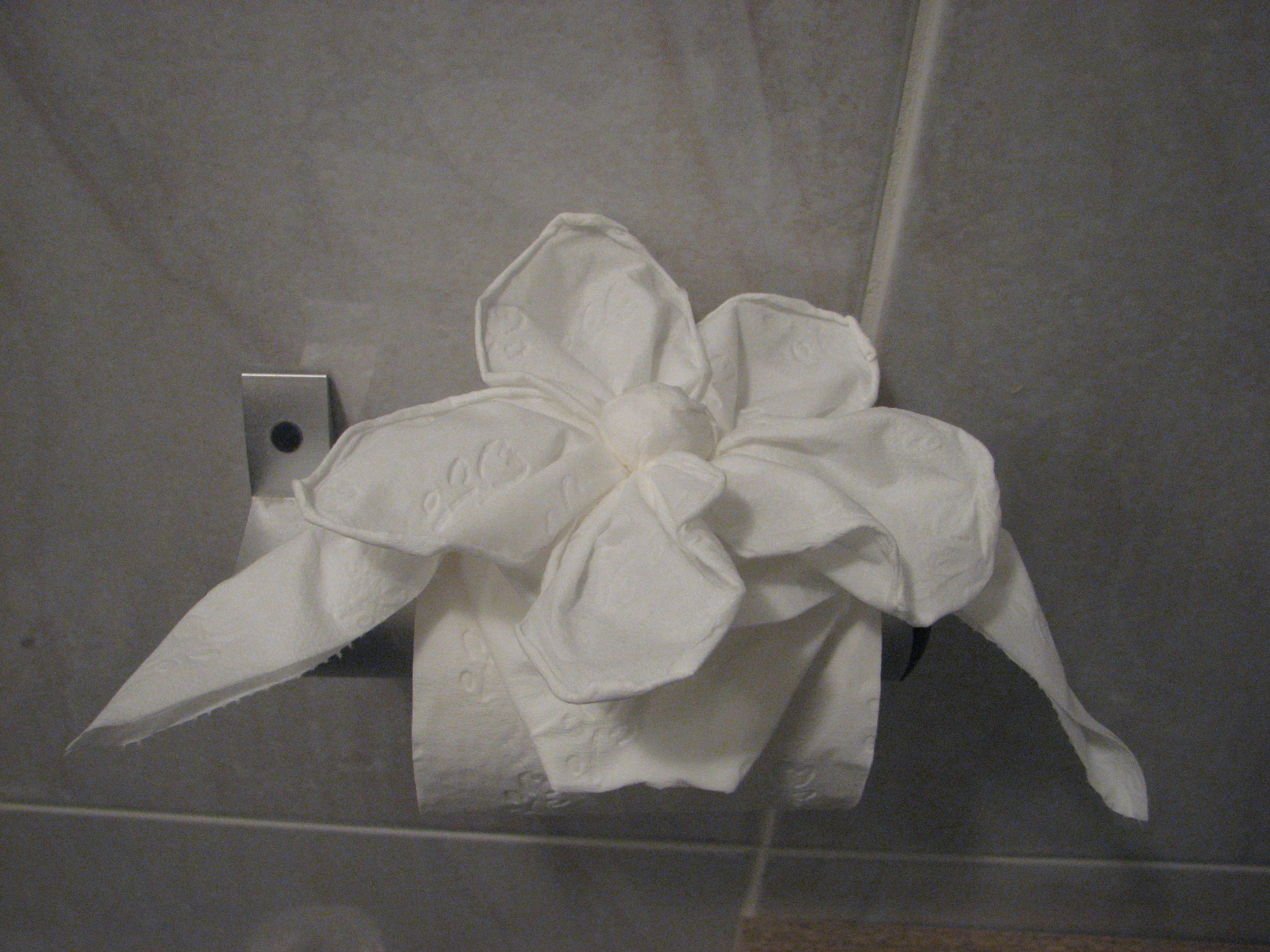 Toilet Paper Origami While Trying To Find Napkin Folding Techniques