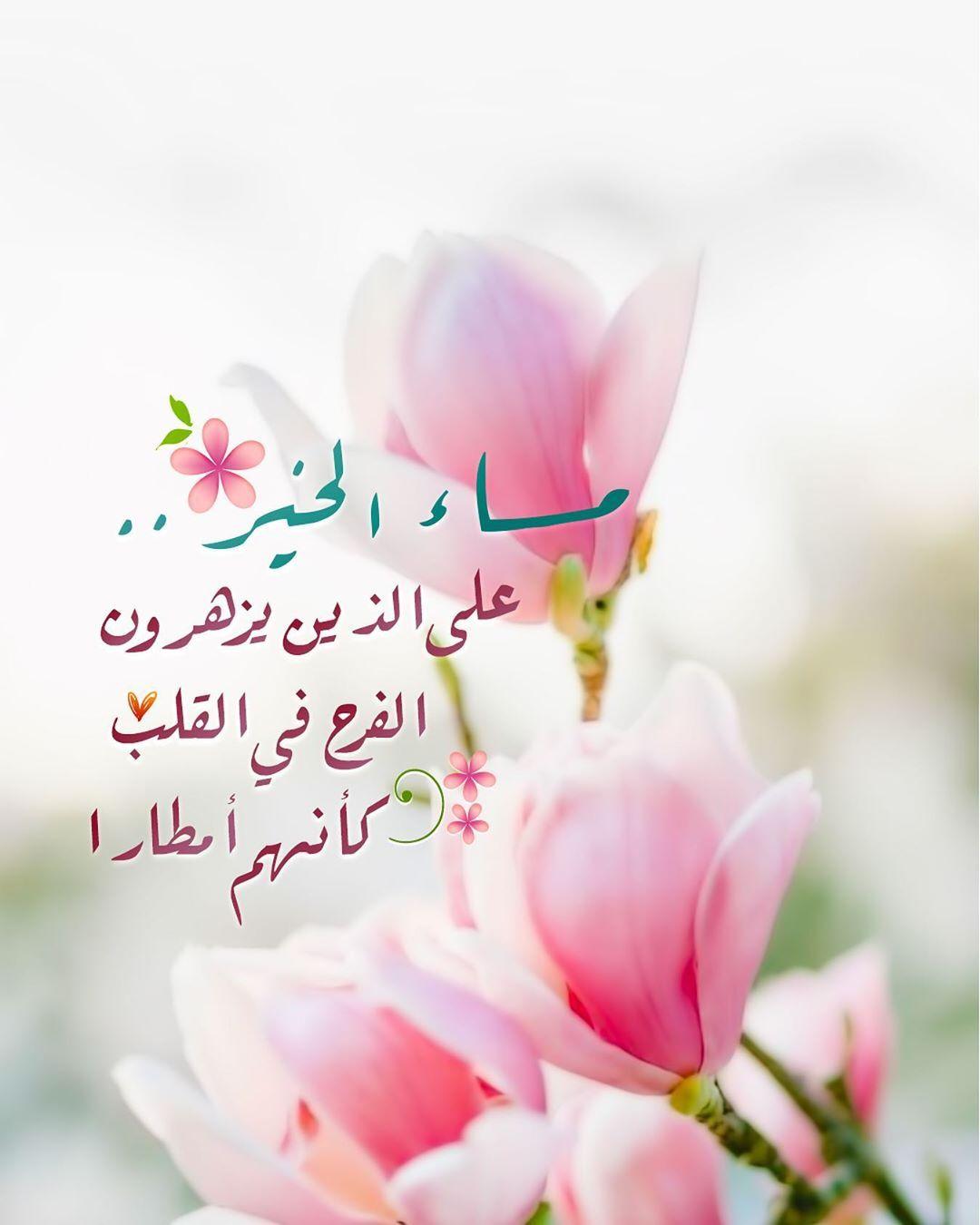 Pearla0203 On Instagram مساء الخ ير على الذين يزهرون الف ــرح في الق لب كأنهم أزهارا ㅤㅤㅤㅤ مساؤ Romantic Words Flower Photos Beautiful Morning