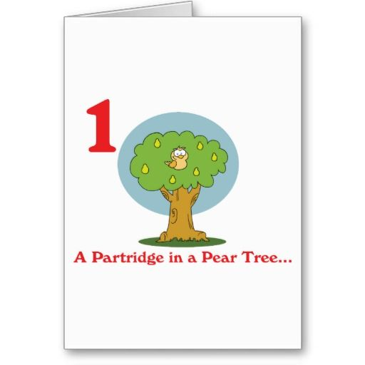12 Days Of Christmas Gifts For Boyfriend: 12 Days Partridge In A Pear Tree Holiday Card