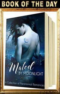 http://theereadercafe.com/ #kindle #ebooks #books #nook #paranormal #romance #boxset