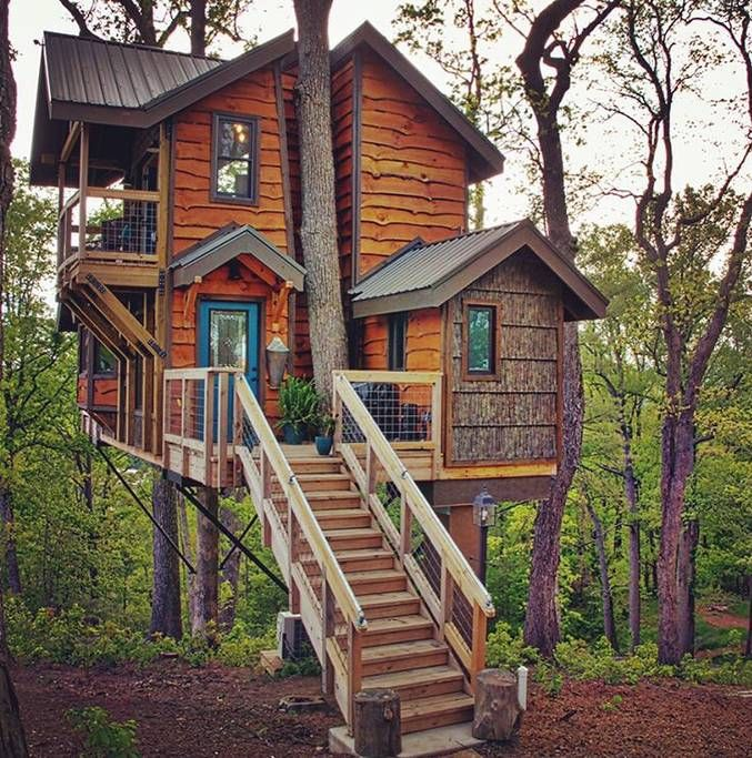 Mountaintop Treehouse W Sunset Views Treehouses For