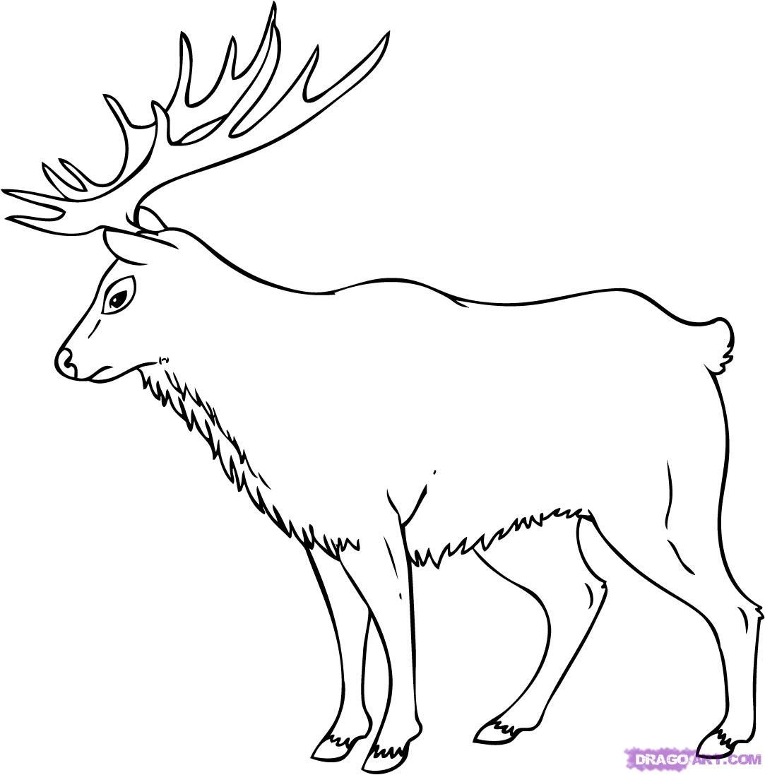 Simple elk coloring pages for How to draw a moos
