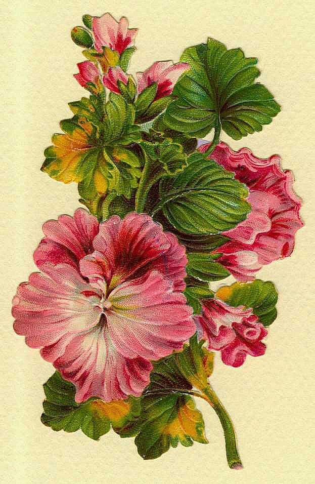Indigo Dreams Victorian FlowersVintage