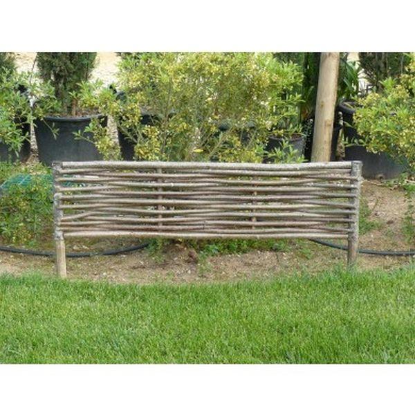 Bordure Noisetier Hampton | jardin | Pinterest | Noisetier, Bordure ...