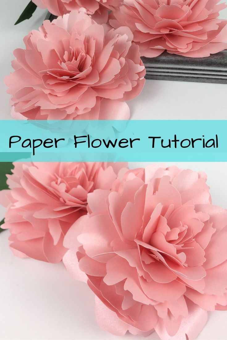 This paper peony would look great in vase. This would be a great paper flower to make with your cric