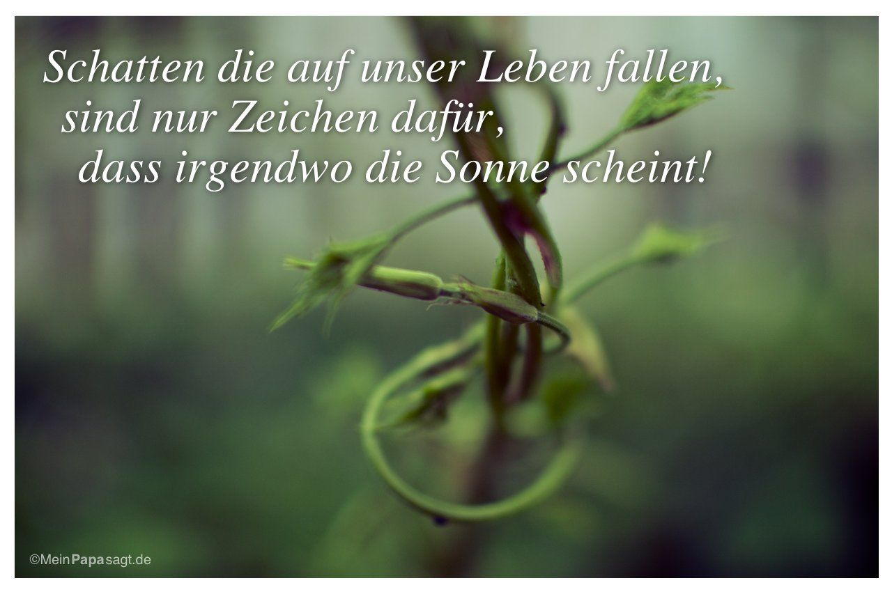 1000+ images about sprüche on pinterest | deutsch, sleep and facebook