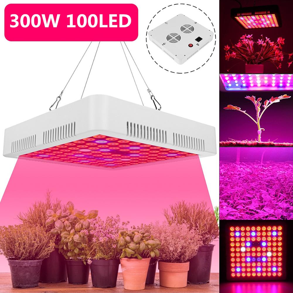 Led Grow Light 4000w Full Spectrum For Indoor Plants Growing Lamp 100 Leds Uv Ir Red Blue Full Spectrum Plant Lights Bulb Panel Walmart Com Led Grow Lights Best Led Grow