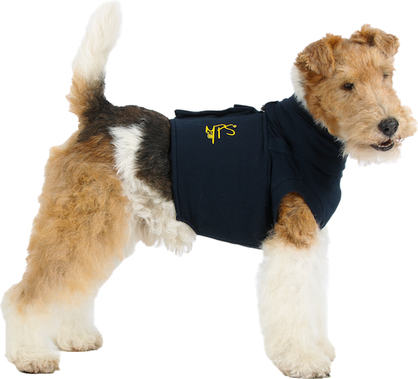 3f5ca1cfdc12 After Surgery Dog Shirt ~ Protects Wound and is Comfortable while allowing  Freedom of Movement | Medical Pet Shirts