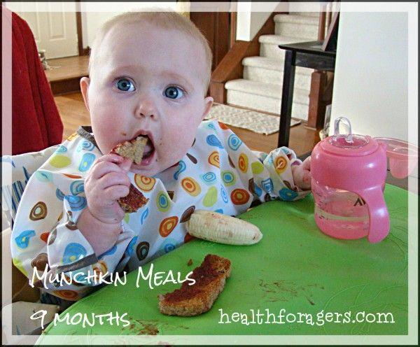 Munchkin Meals – 9 Months