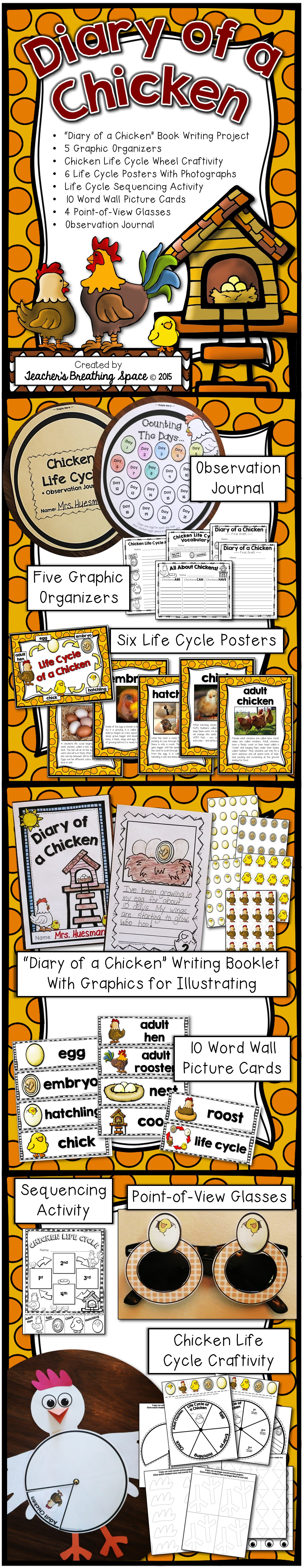 Chicken Life Cycle Diary Of A Chicken Writing Project Amp More