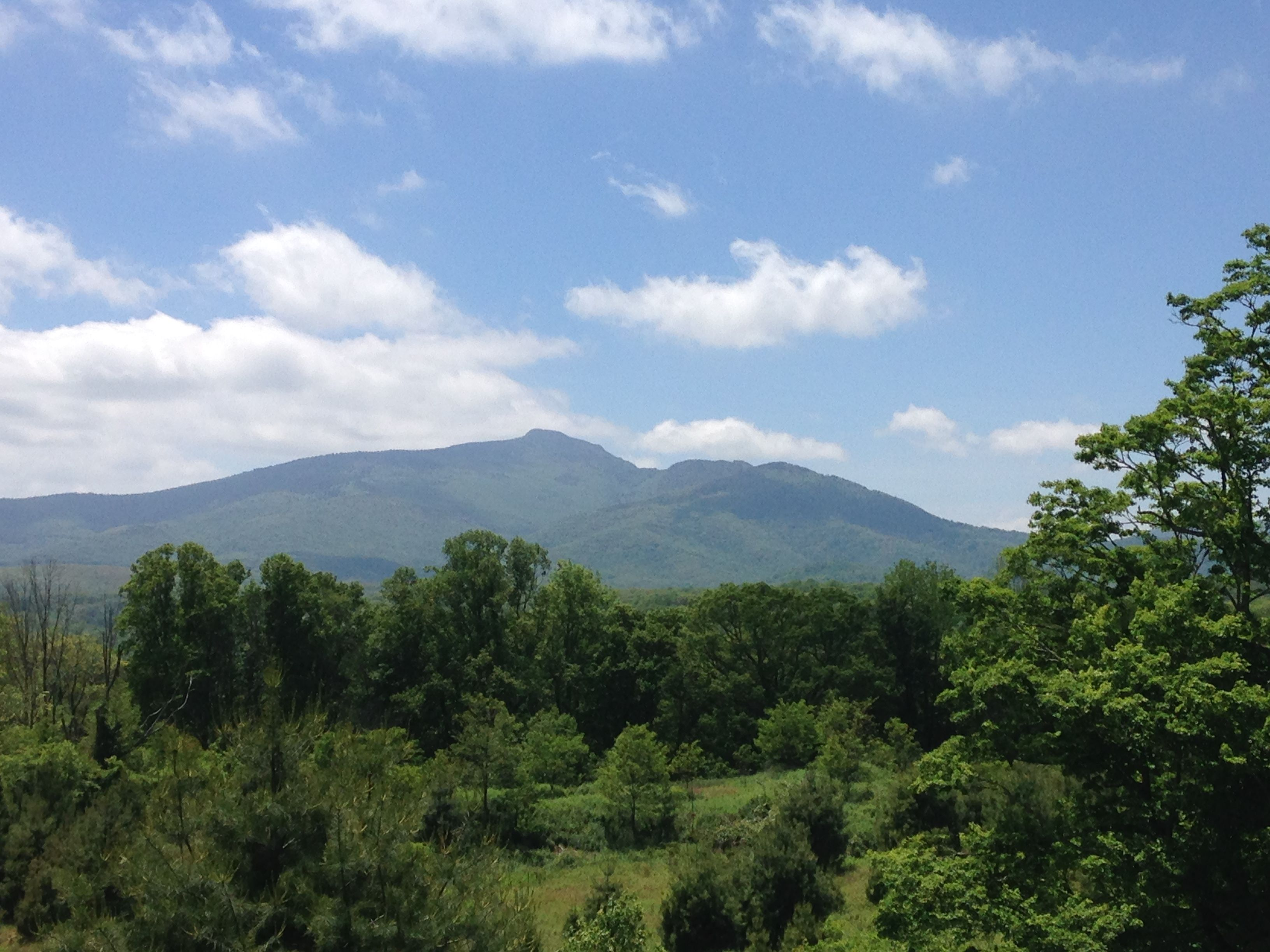 View of Grandfather Mountain from Green Knob Trail in Boone, NC. #hiking #greenknob #grandfathermountain