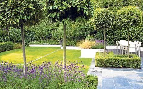 Win your dream garden   Dream garden and Gardens