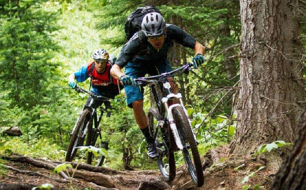 15 Best Mountain Bikes Reviews 2018 Dengan Gambar
